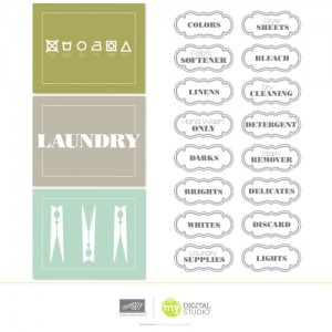 MDS Label this Laundry download
