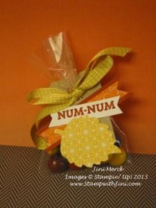 Pumpkin Pie Goodie Gear Fall (1)