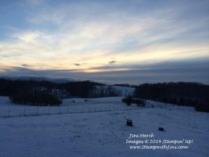 Snow Storm January 2014 (3)