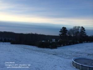 Snow Storm January 2014 (4)