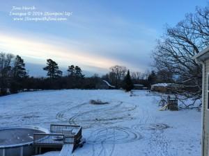 Snow Storm January 2014 (5)