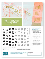 Sans and Stripes Photopolymer Flyer Image