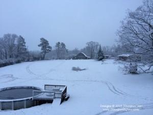 Snow Storm Feb 11 2014 Chewie (3)
