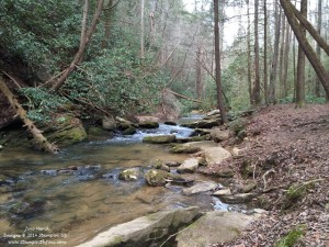 Panthers Creek hike (2)