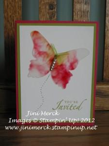 Beautiful Butterflies Die