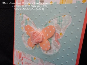 Butterfly Thinlits close up Blue Mountain Stampers Winter Weekend Retreat Shoebox swap (2)