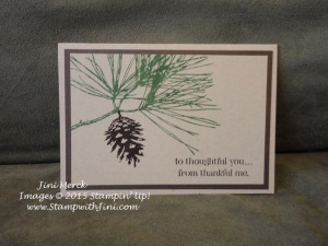 Ornamental Pine and Lots of Thanks (1)