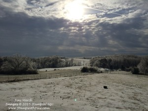 February 2015 Ice Storm (2)