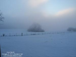 Snow storm Feb 2015 (1)