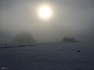 Snow storm Feb 2015 (2)