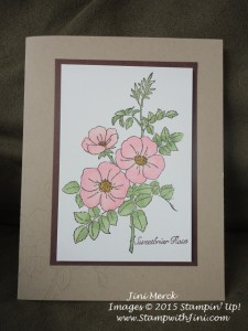 Sweetbriar Rose