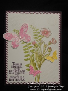 Butterfly Basics and Butterflies Thinlits swaps 2015 (2)