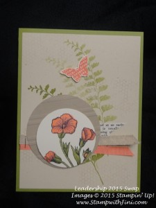 Butterfly Basics and Butterflies Thinlits swaps 2015 (6)