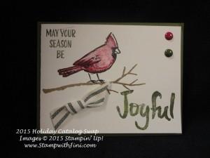 Joyful Season 2015 Holiday Catalog Swap (1)