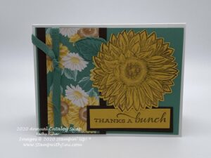 Celebrate Sunflowers In Colors